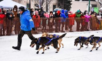 Iditarod ceremonial start alaska ultimate iditarod winter wonderland escorted tour 980