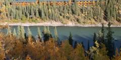 Denali Grizzly Bear Resort