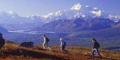 Alaska Nature Guides Heli-Hiking Adventures
