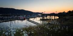 Seldovia City Dock