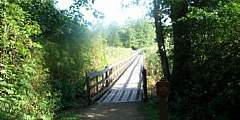 Alder Trail