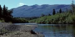 Alexander Creek