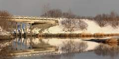 Salonie Creek