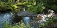 Chester Creek Trail