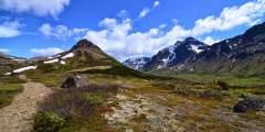 Chugach Guides Alaska