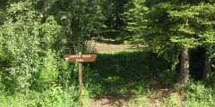Copper River Trail