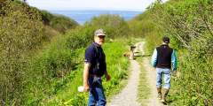 Diamond Creek Trail