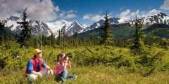 Eielson Visitor Center - Look for Dall Sheep (Mile 66)