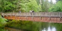 Estuary Life Trail