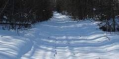 Little Loop Trail