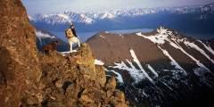 McHugh Peak