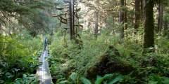 Naha River Trail