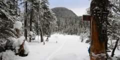 Peterson Lake Trail