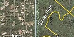 Silver Fern Trail