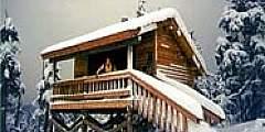 Frenchy Ridge Shelter