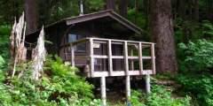Wilson View Cabin