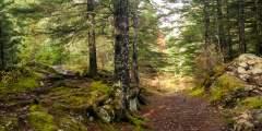 Two Lakes Trail