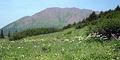 Williwaw Lakes Trail