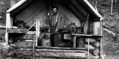 Harry A. Johnson Trapline Cabin