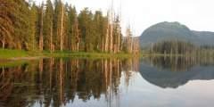Petersburg Lake Cabin
