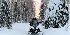 Rod's Alaskan Guide Service Snowmobile Tours & Rentals