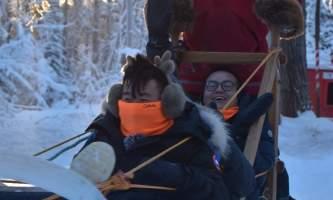 2019 alaska dog sledding pmkpxv
