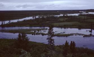 Alagnak-10-mj5fq4