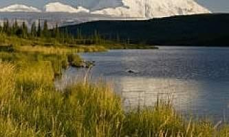 Alaska-Coast-To-Denali-Journey-51-Denali_Middle_Image-pdvtig