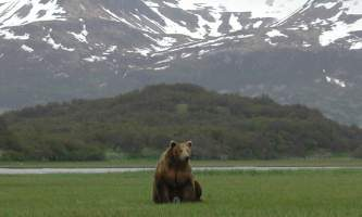 Alaska-Ultimate-Safaris-P1010034-p5lkna