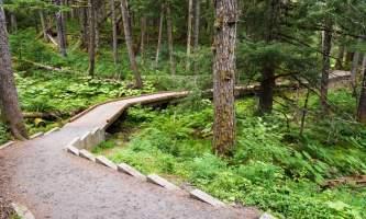 Alaska_Photo_Treks_Wish_List_Photos-Winner_Creek_13_08_008-o2m71t