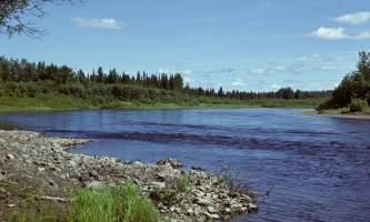 Andreafsky-East-Fork-25-mj5gaa