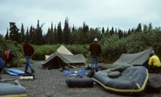 Anvik-08-mj5gfp
