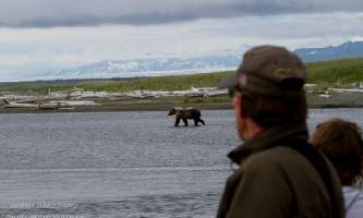Bear_Viewing_at_Ultima_Thule-2012_0816050-139-oklz6g