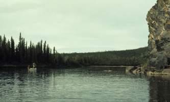 Beaver-07-mj5gj4