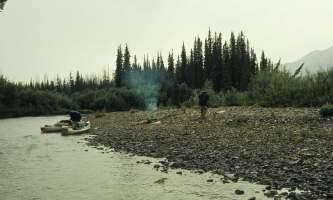 Beaver-08-mj5gj9
