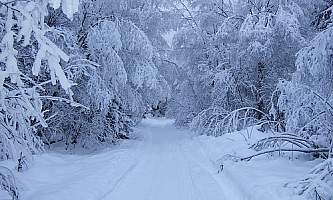 Bird-Valley-Trail-01-mxq4cv