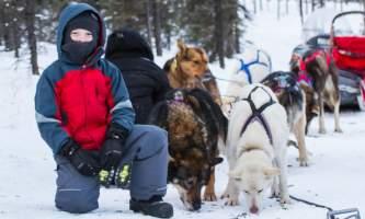 Black spruce dog sledding 11 24 13 1144 o164kt