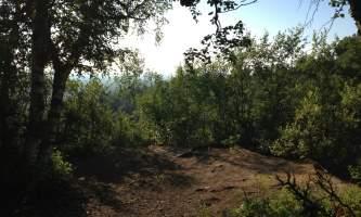 Campbell_Creek_Gorge-08-mxm34a