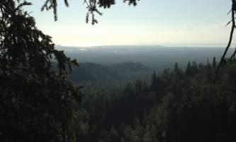 Campbell_Creek_Gorge-09-mxm34f