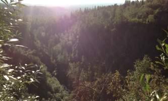 Campbell_Creek_Gorge-11-mxm34u