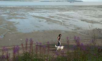 Coastal-Trail-04-mhzha8