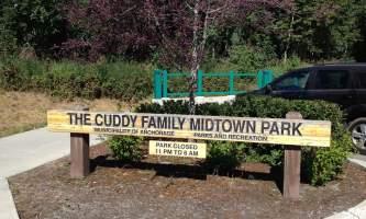 Cuddy_Family_Midtown_Park-01-n8ihm6