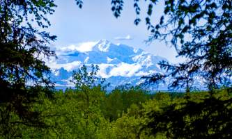 Denali zipline tours 04 mvt973