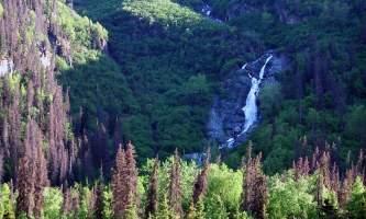 Eagle-River-Nature-Center-_4_-ma7uhc