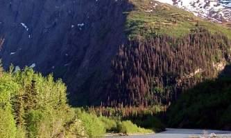 Eagle-River-Nature-Center-_5_-ma7uhd