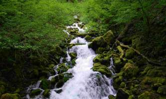 Falls-Creek-Trail-01-mxq5ll