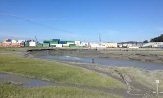 Fishing_Ship_Creek_s_Mouth-02-n8iiqy