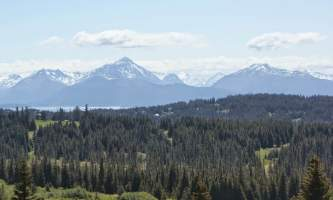Homestead_Trail-Hoomestead_Trail-nz5x0c