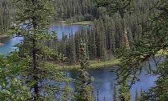 Horseshoe-lake-trail IMG_0350-oqs951