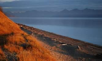 Kincaid_Bluff_Trail-DSC_0895-pblwqw